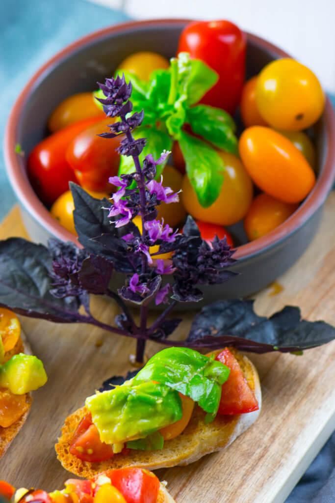 Avocado Tomaten Salat auf gerösteten Brotscheiben