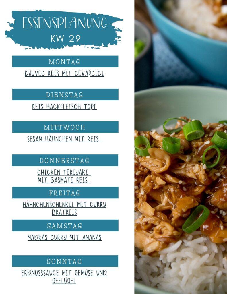Reis Woche - Wochenplan KW 29